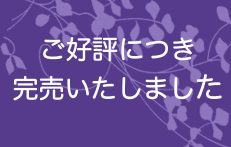 【SALE】ホワイトチョコブラウニー アソート【12個】