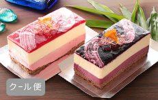 ベガ&アルタイルセット~フロマージュケーキ~【送料無料対象商品】